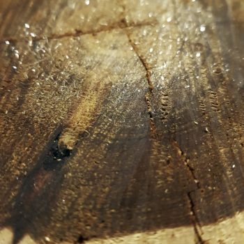 Bois-brut-et-cristaux-odorants_©-OSMOART